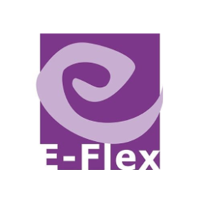 E Flex 2